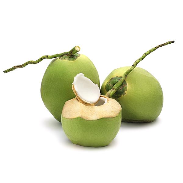 มะพร้าว - jmthaifood
